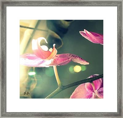 In Your Dreams Framed Print by Geri Glavis