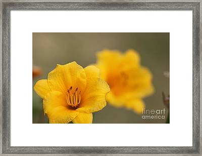 In Your Image Framed Print by Jennifer E Doll