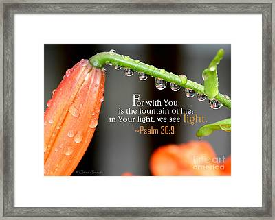 In Your Light Framed Print by Debra Straub