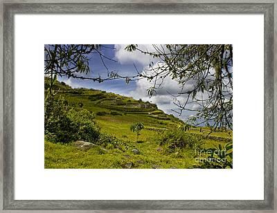 Inca Ruins On Mount Cojitambo In Ecuador Framed Print by Al Bourassa