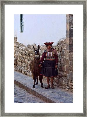 Inca Woman With Llama Framed Print by Linda Phelps