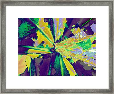 Framed Print featuring the photograph Incognito by Diane Miller