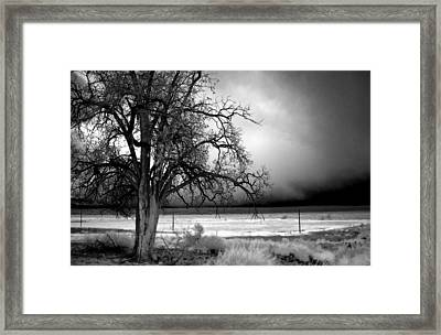 Incoming Storm Framed Print by Cat Connor