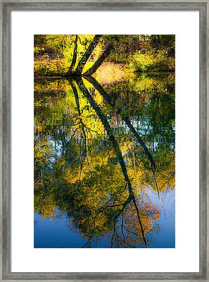 Incredible Colors Framed Print by Parker Cunningham
