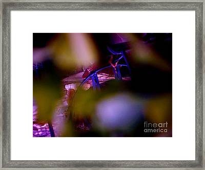 Incripted Framed Print by Sharon Costa