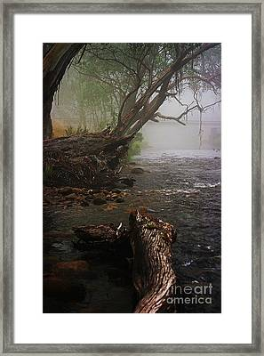 Indeed It Was A Mystical Place Framed Print