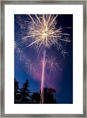 Independence Day 2014 1 Framed Print by Alan Marlowe