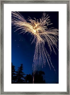 Independence Day 2014 8 Framed Print