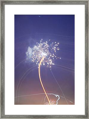 Framed Print featuring the photograph Independence Day by Jani Freimann