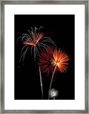 Independence Day  Framed Print by Saija  Lehtonen