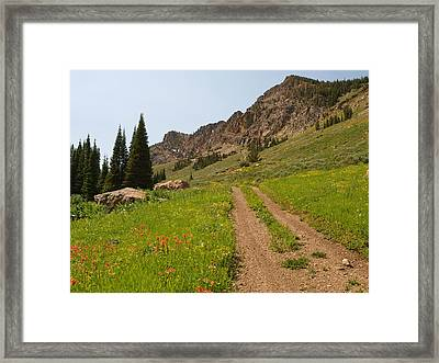 Framed Print featuring the photograph Independence by Jenessa Rahn