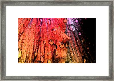 Indepth Framed Print