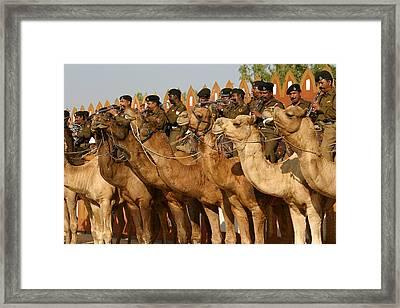 India Camel Band Framed Print by Henry Kowalski
