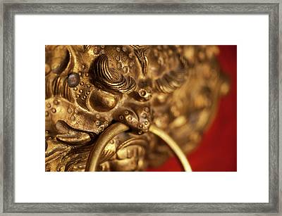 India, Ladakh, Likir, Close-up Framed Print by Anthony Asael