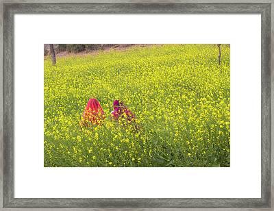India, Rajasthan, Khichan Village Framed Print by Emily Wilson