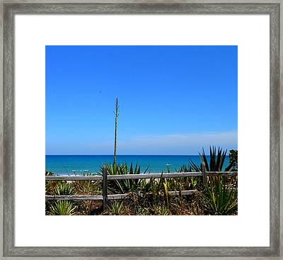 Framed Print featuring the photograph Indialantic By The Sea by Kay Gilley