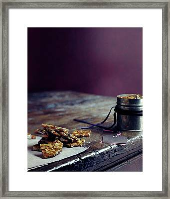 Indian Brittle Framed Print by Romulo Yanes