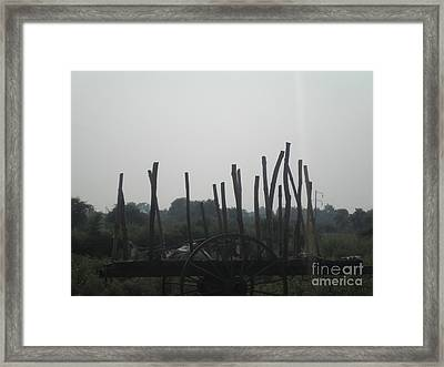 Indian Bull Cart Framed Print