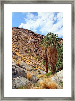 Indian Canyons View With Two Palms Framed Print by Ben and Raisa Gertsberg