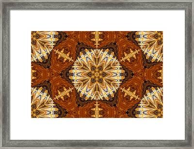 Indian Cloth Framed Print by Georgiana Romanovna
