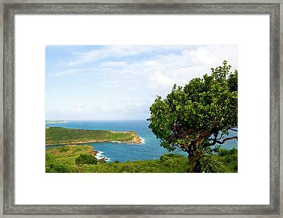 Indian Creek Point, Antigua, West Indies Framed Print by Nico Tondini