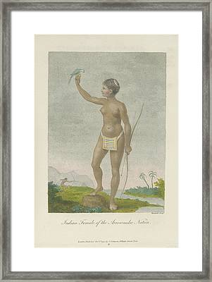 Indian Female Of The Arrowauka Nation Framed Print by British Library