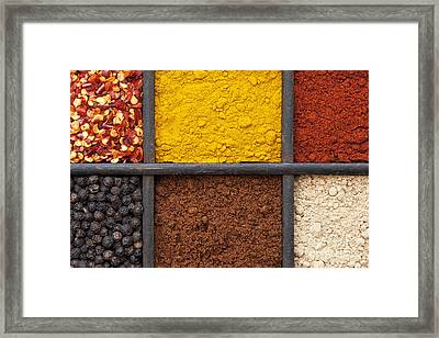 Indian Spice Tray Framed Print