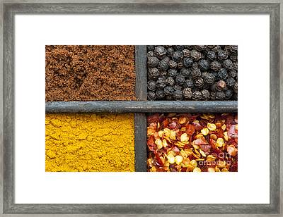Indian Spices Pattern Framed Print