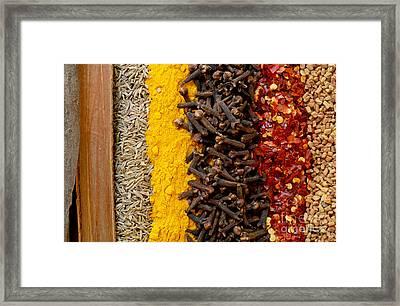 Indian Spices Framed Print
