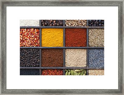 Indian Spices Framed Print