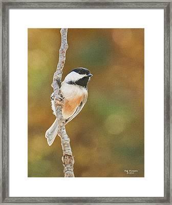 Indian Summer Chickadee Framed Print