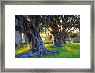 Indian Sunset Framed Print