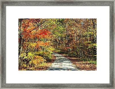 Indiana Back Road In Watercolor Framed Print by Lorna Rogers Photography