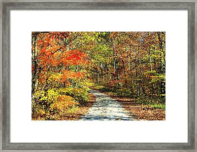 Indiana Back Road Framed Print