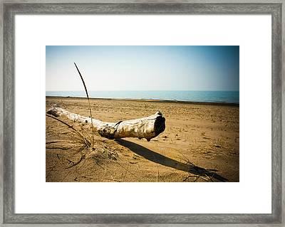 Indiana Dunes Beach Framed Print