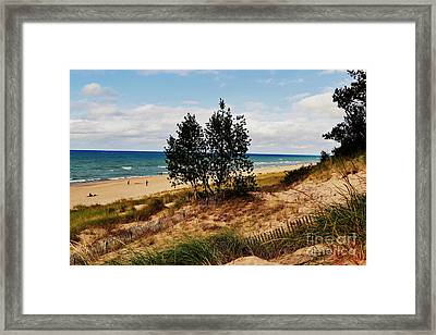 Indiana Dunes Two Tree Beachscape Framed Print