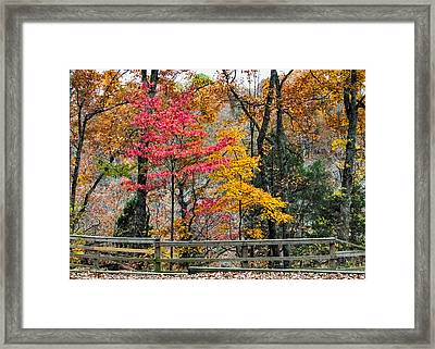 Indiana Fall Color Framed Print by Alan Toepfer