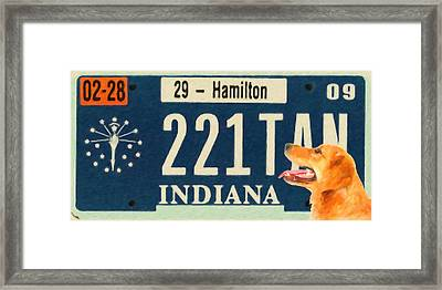 Indiana License Plate Framed Print by Lanjee Chee