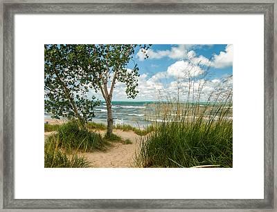 Indiana Sand Dunes State Park Framed Print