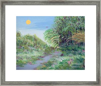 Indiana Spring Afternoon By The Creek Framed Print by Alys Caviness-Gober