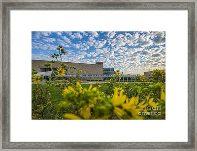 Indiana State Museum Bravo Framed Print by David Haskett