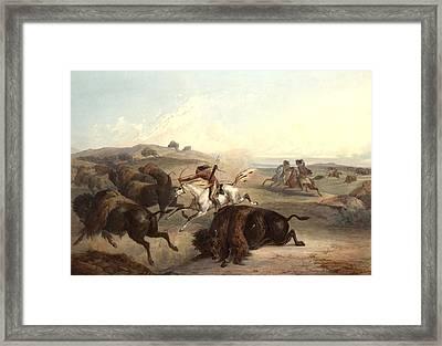 Indians Hunting The Bison Framed Print by Karl Bodmer