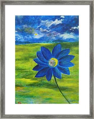 Indigo Blue Framed Print by John Scates