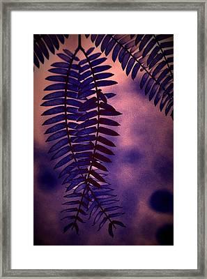 Indigo Haze Framed Print