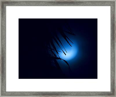 Indigo Mood Framed Print by Mark Andrew Thomas