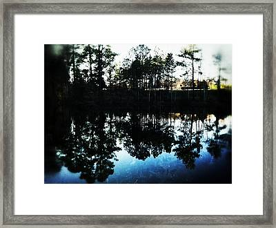 Indigo Reflection Framed Print by Sarah Coppola