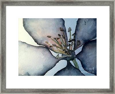Indigo Framed Print by Sherry Harradence