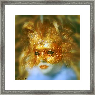 Indoor Carnival. Framed Print by Tautvydas Davainis