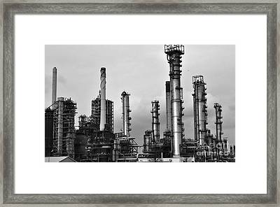 Framed Print featuring the photograph Industrial Forest Rotterdam by Maja Sokolowska