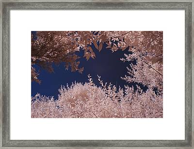 Inferred August Framed Print